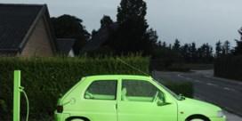 De bedrijfswagen zal groen zijn,   of duur zijn
