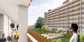 Woontorens aan Peter Benoitpark worden gestript tot op het beton