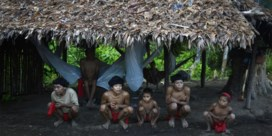 Bolsonaro moet inheemse bevolking Amazonewoud beschermen tegen illegale mijnwerkers