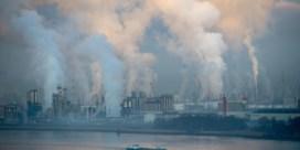 Antwerpse haven zit in zelfde schuitje als landbouw