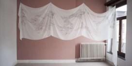 Vlaamse overheid koopt vooral kunst van vrouwen