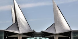 Antwerpse rechtbank maakt vuist tegen freefights