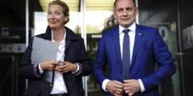 Radicaal AfD-duo wil Duitsland weer 'normaal' maken