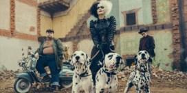 Cruella, camp en couture