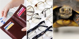 Brillenglazen meer terugbetaald, meer reptielen als huisdier en goedkoper 'in het rood gaan': dit verandert op 1 juni
