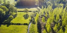 Vrijwilligers zullen waterstand in Haspengouwse beken meten