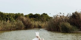 Het paellaparadijs