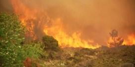 Hevige bosbrand teistert westen van Noorwegen