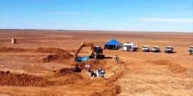 Gigantische dinosaurus ontdekt in Australië