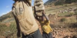 Unicef: 'Aantal kinderen in kinderarbeid stijgt na twee decennia opnieuw'