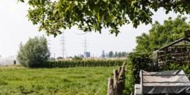 Zwijndrecht laat komende dagen nieuwe stalen nemen, ook Sint-Niklaas doet hetzelfde