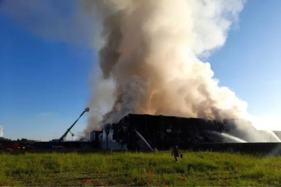 Brand in Gentse haven veroorzaakt geurhinder