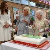 Britse Queen laat zich niet kennen en snijdt taart met zwaard