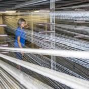 Fors minder wagens en tapijten vanuit België naar het VK verscheept
