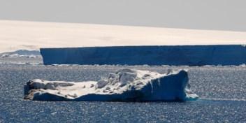 Antarctica werd ontdekt door Polynesiërs (zeggen hun nazaten in Nieuw-Zeeland)