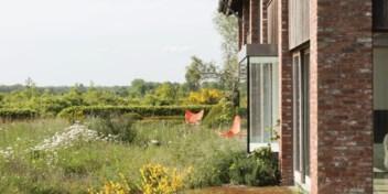 Tuinarchitect Aldrik Heirman vertelt hoe je niets kunt doen: 'Van je tuin moet je afblijven'