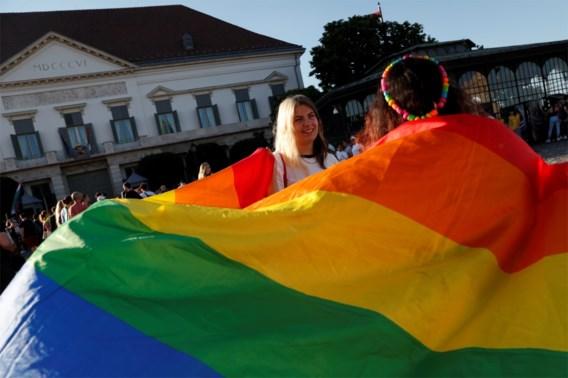 Dertien EU-lidstaten ondersteunen verklaring tegen omstreden Hongaarse lgbti-wet