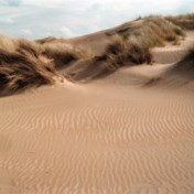 Natuur krijgt helft van miljoenen tegen droogte