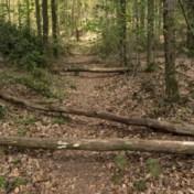 Mountainbikers verliezen terrein