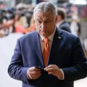 Hongaarse premier Orban: 'Ik verdedig de rechten van holebi's'