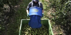 Is hervormd landbouwbeleid groen genoeg?