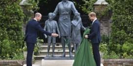 William en Harry onthullen standbeeld Diana
