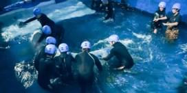 De grote walvisverhuizing