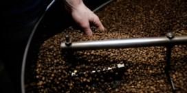 Klimaat en stakingen dreigen kopje koffie duurder te maken
