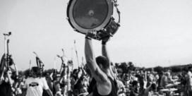 Wij willen Dave Grohl