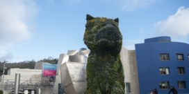 Guggenheim Bilbao zoekt geld voor 'Puppy'