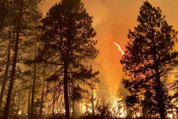 Natuurbranden blijven hevig woeden in westen van VS en Canada