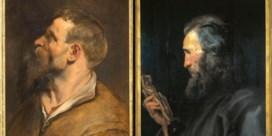 Rubens had een databank