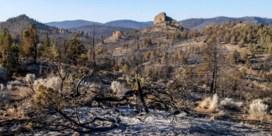 Bosbrand in westen van de VS bedreigt 5.000 huizen
