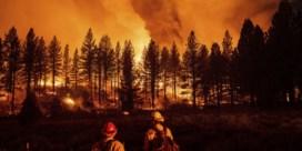 Koppel dat enorme bosbrand veroorzaakte met 'gender reveal party', riskeert twintig jaar cel