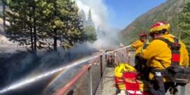 Brandweer blust vanop dak rijdende trein