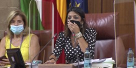 Spaans regioparlement opgeschrikt door rat