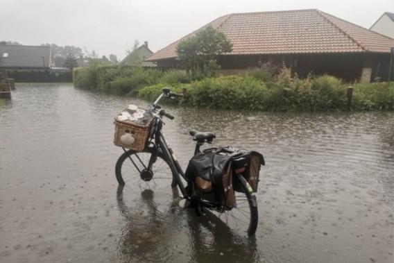 Nieuwpoort moet 60 liter water in uur tijd slikken: 'Nooit meegemaakt dat deze wijk onder water staat'