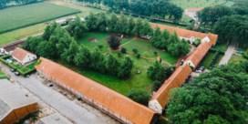 Wortel: van bedreigd erfgoed tot Werelderfgoed