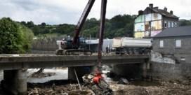 Na de overstromingen, de milieuramp: 'Sommige soorten kunnen voorgoed uit de Vesder verdwijnen'