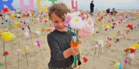 De waarde van papieren strandbloemen: 'Zeven handjes alstublieft'