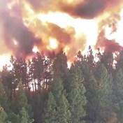 Voor, tijdens en na: webcam filmt verwoestende passage bosbrand