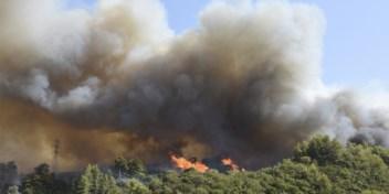 Historische hittegolf in Griekenland, vier dorpen ontruimd door bosbrand