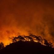 Dramatische dronebeelden tonen ravage na bosbranden in Turkije