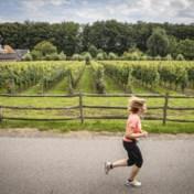 'Slechtste jaar ooit' voor Belgische wijnboeren