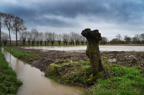 Augustus begint met hoge tot zeer hoge grondwaterstanden