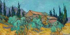 Schilderij Van Gogh blikvanger op veiling