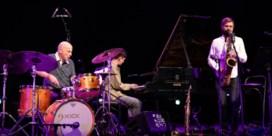 Jazz Middelheim: Muziek maakt veel goed, nagenoeg alles