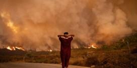 Bosbranden teisteren nu ook Zuid-Frankrijk en Marokko