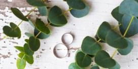 Hoe eucalyptus trouwfeesten overwoekert