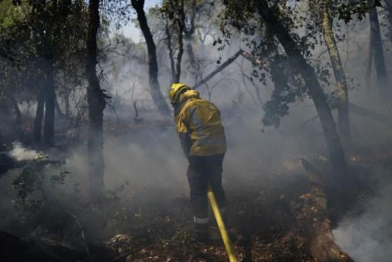 Bosbrand Saint-Tropez 'onder controle, maar niet bedwongen'
